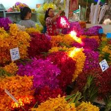 ワットポーの帰りはコチラへ!お花の市場♪